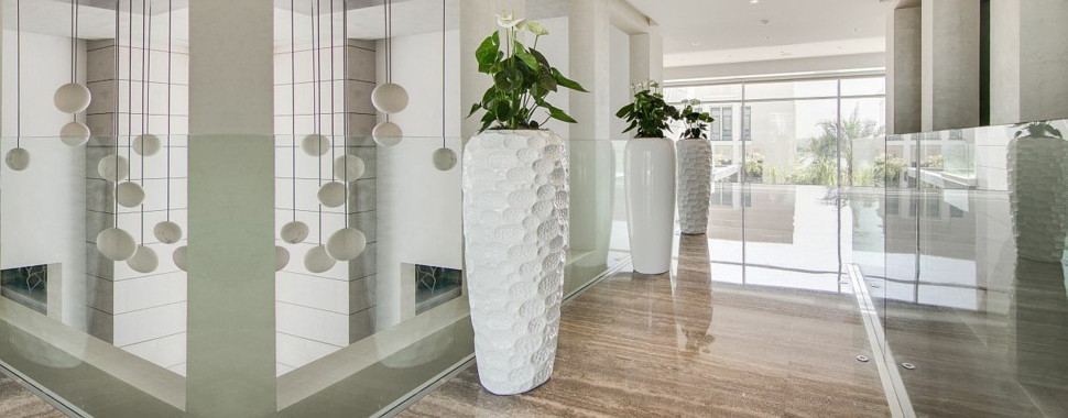 Contemporary and Modern Vases